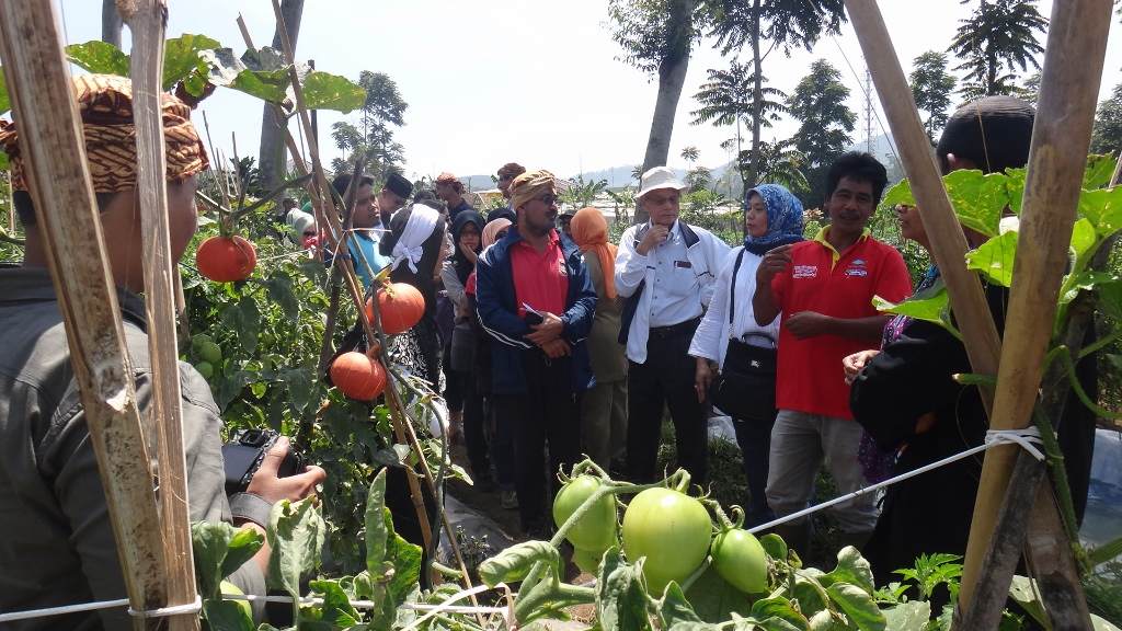 RRPG Participants discuss with farmers in Cikole village, Lembang, Indonesia