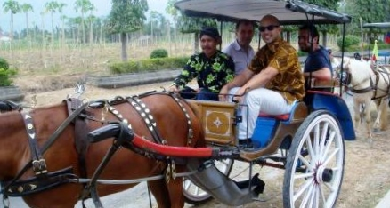 Participants used horse cart to see the rural areas surrounding Borobudur temple. 20 September 2011.
